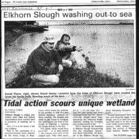 CF-20190821-Tidal action scours unique wetland0001.PDF