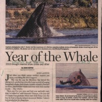CF-20190712-Year of the whale0001.PDF