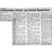 20170608-Anchovies stink up local beaches0001.PDF