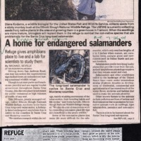 CF-20190809-A home for endangered salamanders0001.PDF