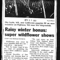CF-20200221-Rainy winter bonus; Super wildflower s0001.PDF