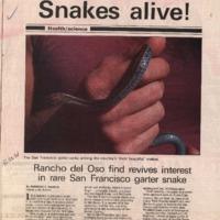 20170607-Snakes alive0001.PDF