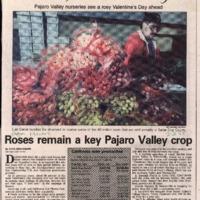 CF-20200220-Roses remain a key pajaro valley crop0001.PDF
