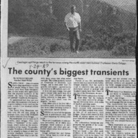 CF-20200603-The county's biggest transients0001.PDF