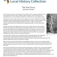 https://history-omeka-dev.santacruzpl.org/omeka/uploads/articles/AR-040.pdf