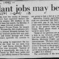 CF-20190918-Vegetable plant jobs mayu be on thin i0001.PDF