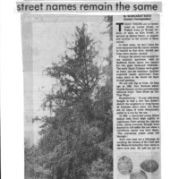 CF-20200213-The trees are gone, but the street nam0001.PDF