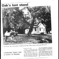 CF-20200213-Oaks last stand0001.PDF