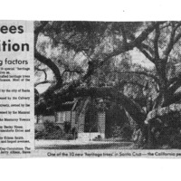 CF-20200213-Ten local trees get recognition0001.PDF