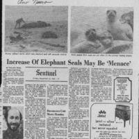 20170611-Increase of elephan seals may be menance0001.PDF