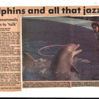 CF-20190929-Dolphins and all that jazz0001.PDF