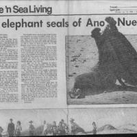 20170611-The elephant seals of Ano Nuevo0001.PDF