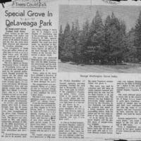CF-20190322-Special grove in Delaveaga park0001.PDF