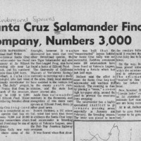 CF-20190808-Santa Cruz salamander finds company, n0001.PDF