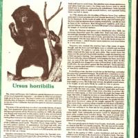 20170607-Ursus horribilis0001.PDF