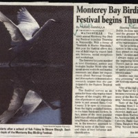 CF-20180107-Monterey Bay Birding Festival begins T0001.PDF