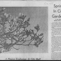 CF-20180322-Spring in city gardens0001.PDF