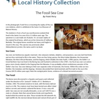 https://history-omeka-dev.santacruzpl.org/omeka/uploads/articles/AR-030.pdf