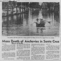 CF-20200110-Mass death of anchovies in santa cruz0001.PDF