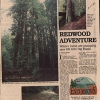 CF-20180103-Redwood adventure0001.PDF