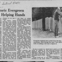 CF-20180711-Historc evergreen gets a helping hand0001.PDF