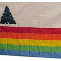 Flag - Santa Cruz County
