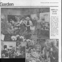 CF-20200221-Wildflowers attract crowds0001.PDF