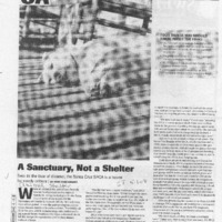 20170603-A sanctuary, not a shelter0001.PDF