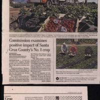 20170527-Strawberries provide $3.4B0001.PDF
