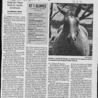 20170607-Horse rescue group could close doors0001.PDF