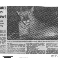 20170609-Mountain lions on the prowl0001.PDF