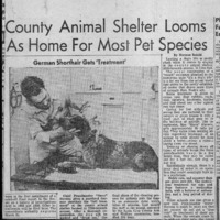 20170602-County animal sheler looms as home0001.PDF